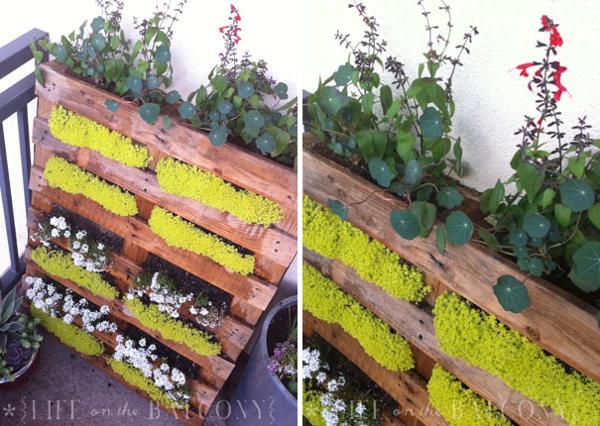 Jardim vertical com pallets for Jardin vertical casero palet