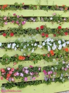 Jardim vertical feito com palete