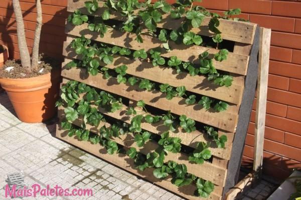 Jardim vertical com pallets for Jardines verticales con tarimas