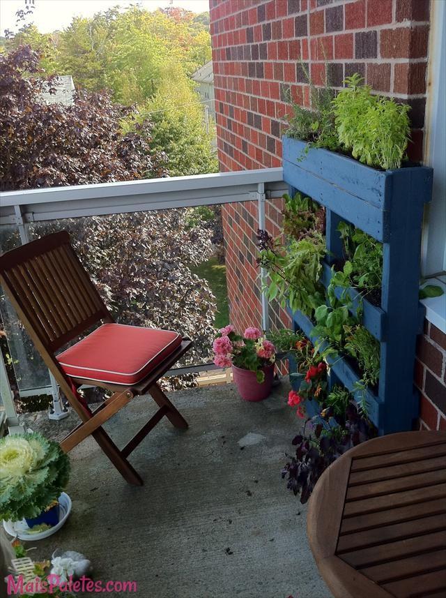 jardim vertical terraco:Jardim Vertical com pallet