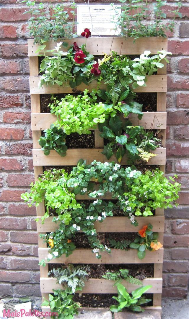 12 paletes de madeira que s o jardins verticais for Jardin vertical casero palet