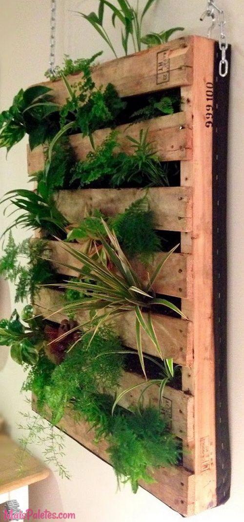12 paletes de madeira que s o jardins verticais for Que planta para muro exterior vegetal