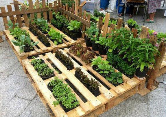 Hortas em paletes de madeira for Posso ipotecare terra
