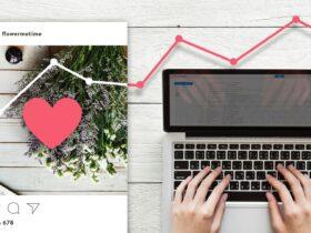 Como usar o Instagram Insights para expandir seus negocios